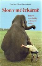 Slon v mé čekárně