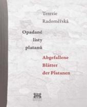 Opadané listy platanů / Abgefallene Blätter der Platanen