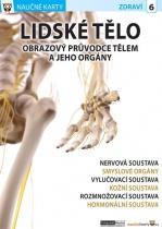 Lidské tělo 2 - Obrazový průvodce tělem a jeho orgány