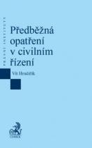 Předběžná opatření v civilním řízení