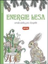 Energie lesa