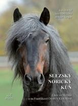 Slezský norický kůň