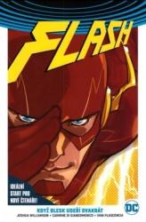 Flash - Když blesk udeří dvakrát