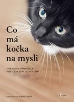 Co má kočka na mysli