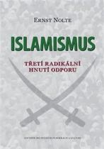 Islamismus - Třetí radikální hnutí odporu