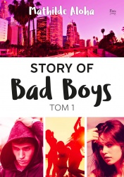 Story of Bad Boys 1