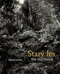 Starý les / The Old Forest