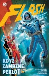 Flash - Když zamrzne peklo