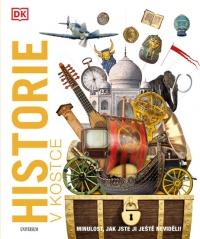 Historie v kostce