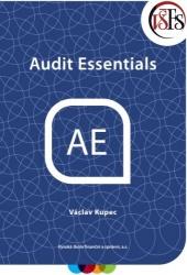 Audit Essentials