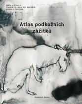 Atlas podkožních zážitků / K problematice viděného