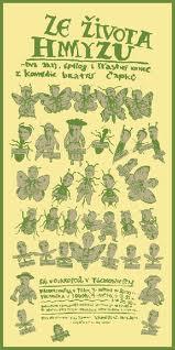 Ze života hmyzu