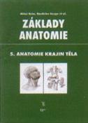 Základy anatomie V.