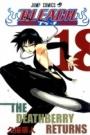 Bleach 18-The Deathberry Returns