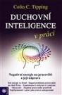 Duchovní inteligence v práci
